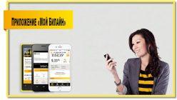Установите приложение «Мой Билайн» и управляйте мобильными услугами со смартфона или планшета.