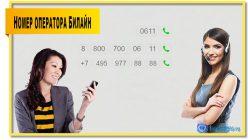 Номер оператора билайн 0611. С городского и мобильных других операторов 8 800 700 0611