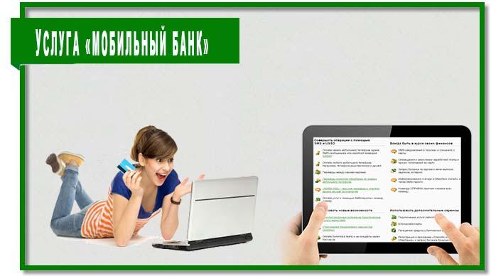 Перед тем как подключить мобильный банк следует ознакомиться с его возможностями и особенностями.